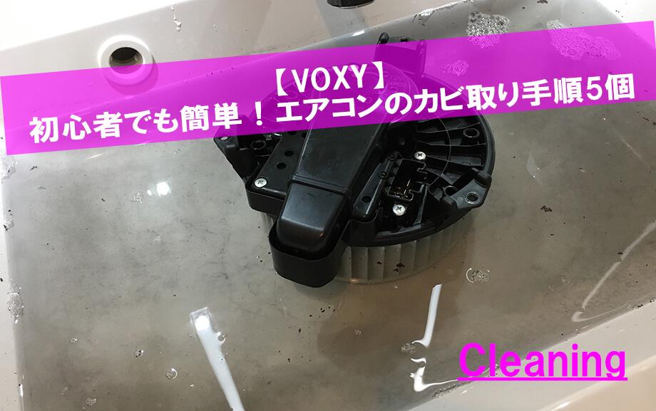 【VOXY】初心者でも簡単!エアコンのカビ取り手順5個