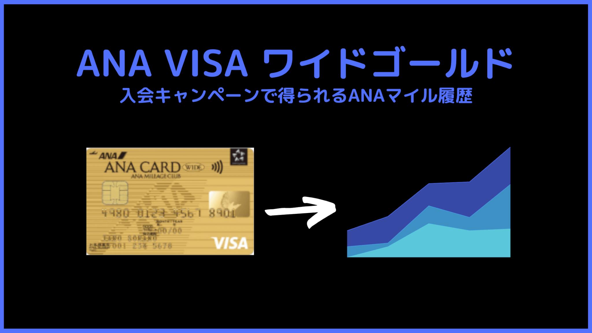 【必見】超貴重!ANA VISAワイドゴールドの入会キャンペーン履歴